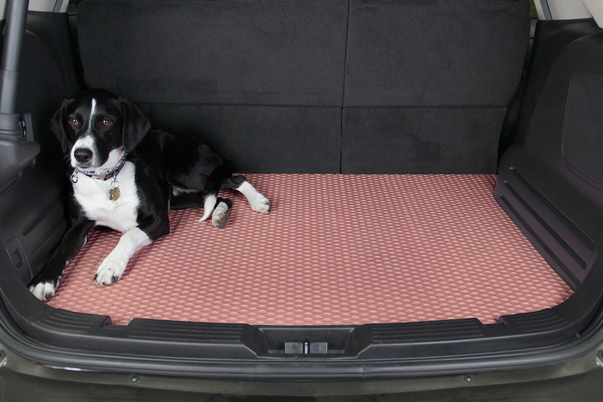 Rubber floor mats for dogs - Rubber Floor Mats For Dogs 25